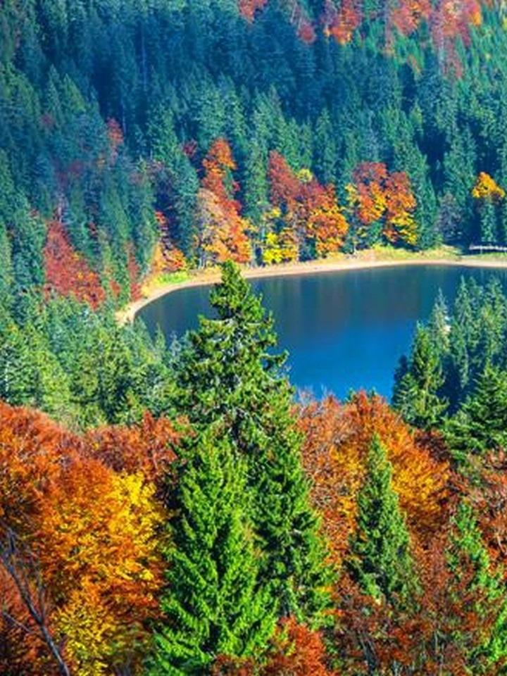 Podzim u Syněrivského jezera